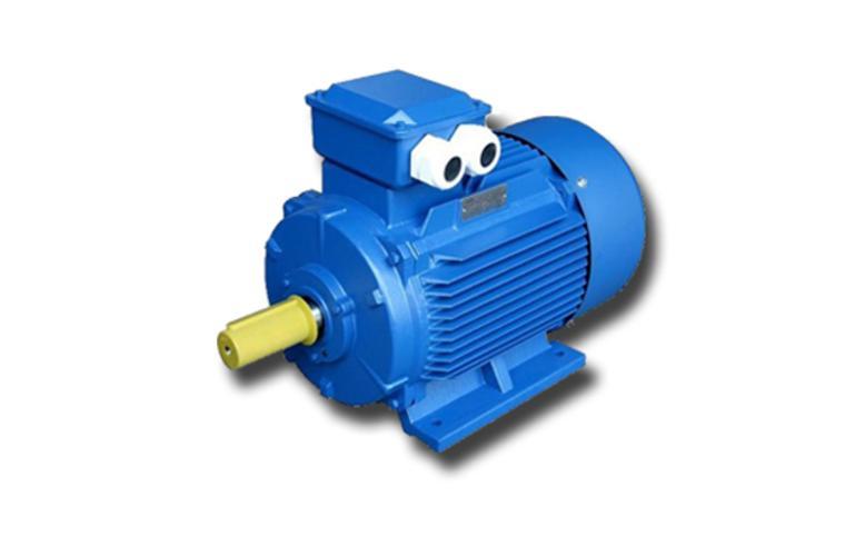 Электродвигатель АИР 160 (М2, М4, М6, М8)