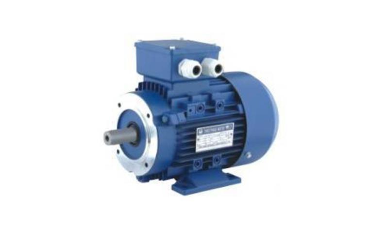 Электродвигатель АИР 90 (L2, L4, L6, LA8, LB8)