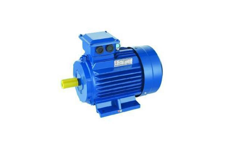 Электродвигатель АИР 56 (В4, А4, В2, А2)